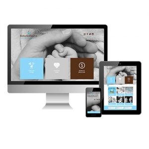 website-design-development-1